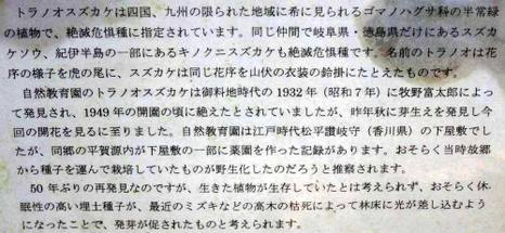 101025tora_suzu3_2